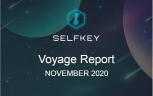 Progress Report November 2020
