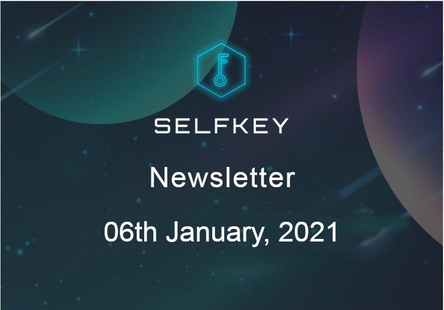 SelfKey Newsletter - Voyage Report Dec 2020