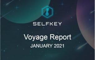 Progress report January 2021
